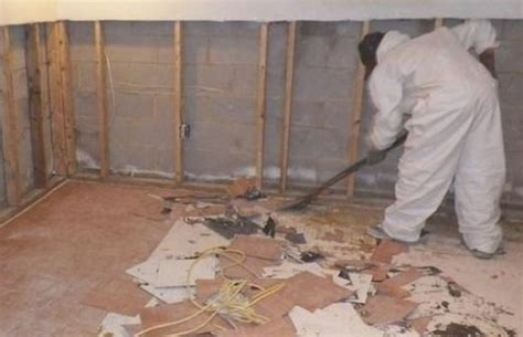 11 Ways To Remove Mold In Basement  Mold In Basement. Wall Fixtures For Living Room. Living Room Dimensions Furniture. Living Room Synonym. Desk In The Living Room