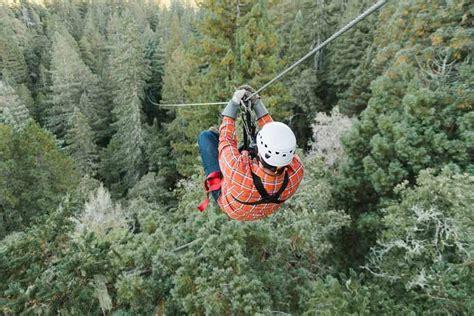 forest flight zipline  zip lines   redwood canopy
