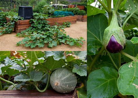 home garden monsanto   sleuth journal