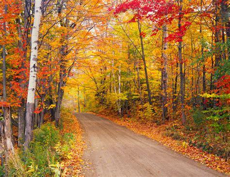7 Best Fall Foliage Trips  Globus Blog