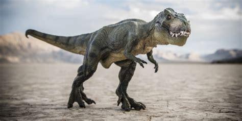 techno bureau bien avant la chute de l 39 astéroïde les dinosaures étaient