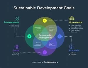 Sustainable Development Goals Venn Diagram Infographic