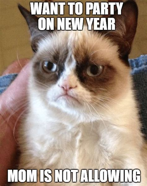 pin  funny  year memes quotes humor hilarious