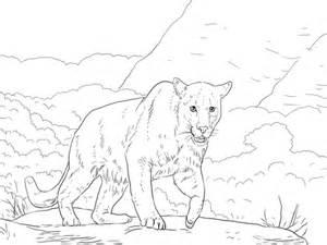 crouching puma coloring page supercoloringcom