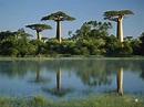 Madagascar | Travel the World