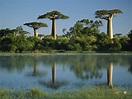Mission to Madagascar!: Madagascar Info