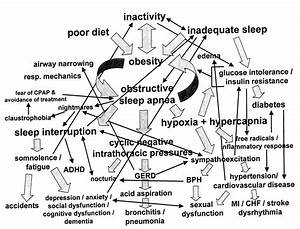 Sleep And Neurology  Sleep Disorders Are Simple And They