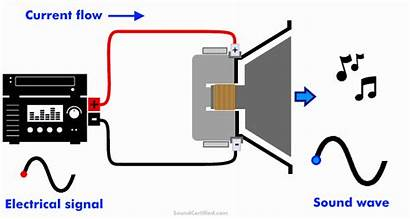 Speakers Diagram Animated Step