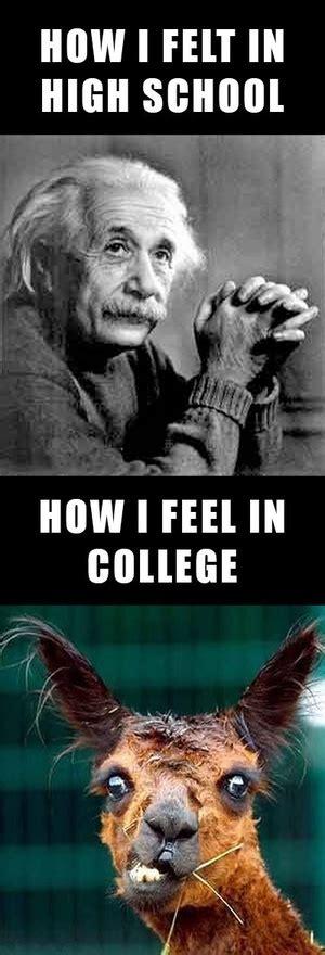 Funny College Memes - college memesltcl magazine