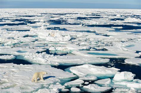storm unfreezes north pole causing temps  degrees