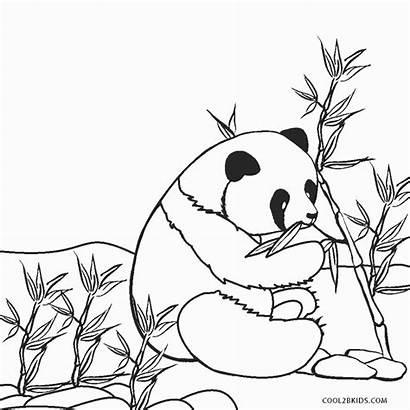 Coloring Pages Panda Cool2bkids Printable Lovesmag Breathtaking