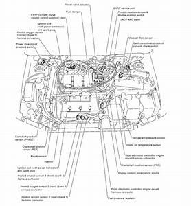 Solved  Cam Position Sensor Local 2000 Maxima
