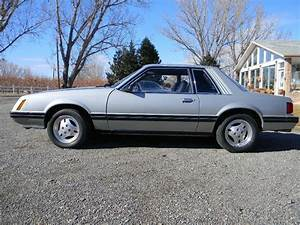 1979 Ford Mustang for Sale | ClassicCars.com | CC-1177089