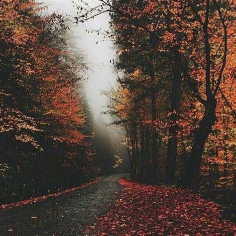 pin  danielle  autumn   pinterest autumn