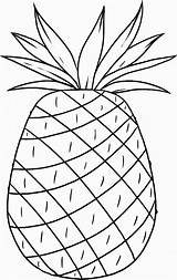Pineapple Coloring Hawaii Luau Pages Printable Cayenne Smooth Hawaiian Template Aloha Popular Templates Coloringhome Pdf Birthdayprintable Site sketch template