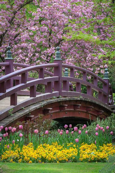 Japanischer Garten Wien Kirschblüte by Fr 252 Hling Im Japanischen Garten Leverkusen Brennweite Welt