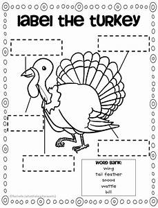 What The Teacher Wants   Turkey Downloads And Something Extra