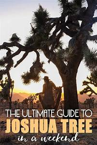 The Ultimate Guide To Joshua Tree In A Weekend