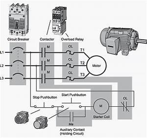 Motor Starter Wiring Diagram