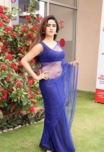 transparent saree   Saree Fashion  Transparent