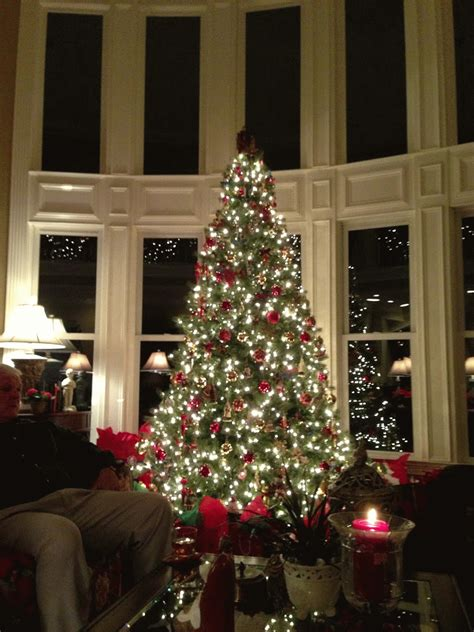 beautiful twinkling lights christmas tree pictures