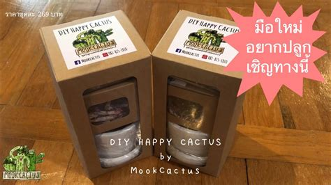 DIY HAPPY CACTUS ชุดปลูกแคคตัสด้วยตนเอง | MookCactus - YouTube