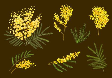 printable flower templates  psd vector jpeg