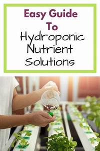 Simple Guide To Hydroponic Nutrient Solutions  Learn All