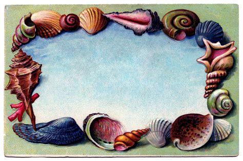 vintage clip art souvenir seashell postcard
