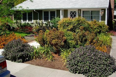 landscaping front yard without grass lawn replacement landscaping without grass houselogic lawn tips