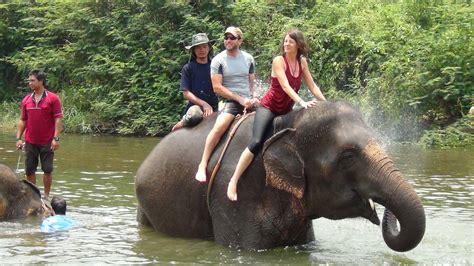 everyone soap elephant rides ethics vs entertainment