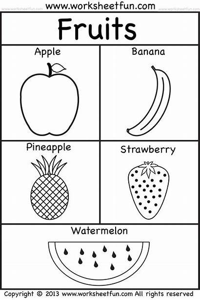 Fruits Worksheets Fruit Kindergarten Preschool Coloring Printable