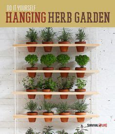 17 best ideas about hanging herb gardens on