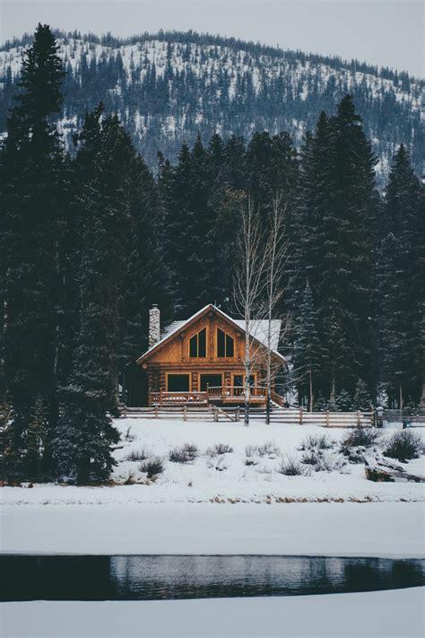 banff cabin nature teapalm banff ab prints