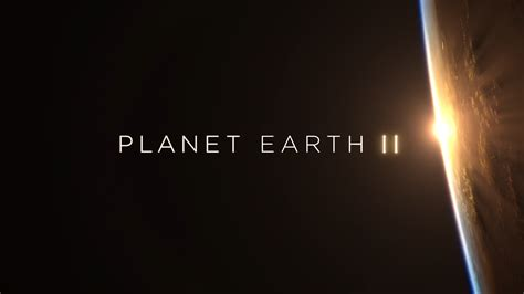 Planet Earth Animals Wallpaper - planet earth wallpaper