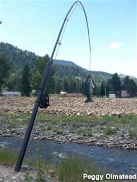 troy mt large fishing pole  fish