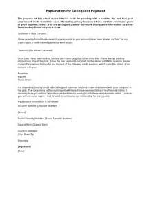 Sample Letter Of Explanation For Bankruptcy from tse1.mm.bing.net