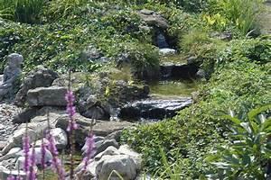 Bachlauf Im Garten : gartenteich bachlauf ~ Michelbontemps.com Haus und Dekorationen