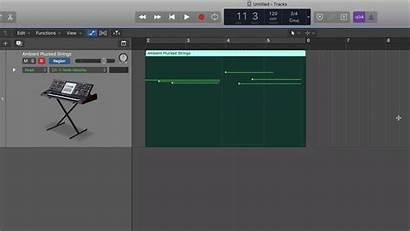 Logic Midi Draw Working Without