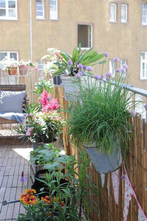 Den Balkon Mit Passenden Pflanzen Und Blumen Im September Beleben by Bienenfreundliche Pflanzen Fr Den Kleinen Garten Oder Den