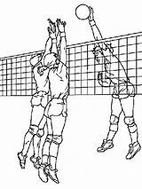 Volleyball Coloring Printable Pages sketch template