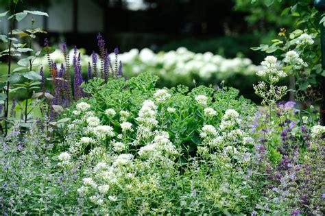 Naturgärten › Ostsee Gärten