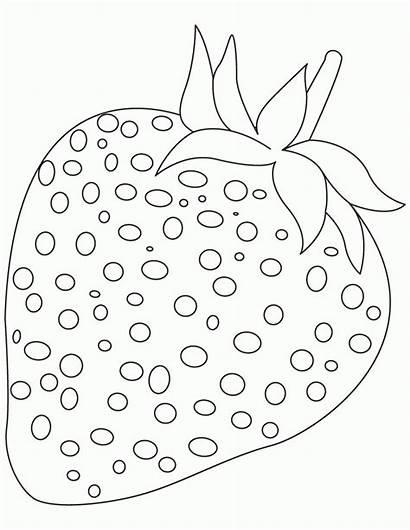 Coloring Fruit Preschool Strawberry Popular