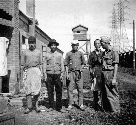 forgotten japanese pow camp recalled  chinatown
