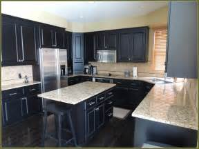 ideas for refinishing kitchen cabinets kitchen kitchen color ideas with oak cabinets and black