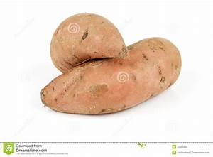Sweet Potato Clipart – Cliparts