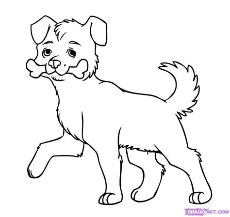 funny pictures   draw  dog easily  kids