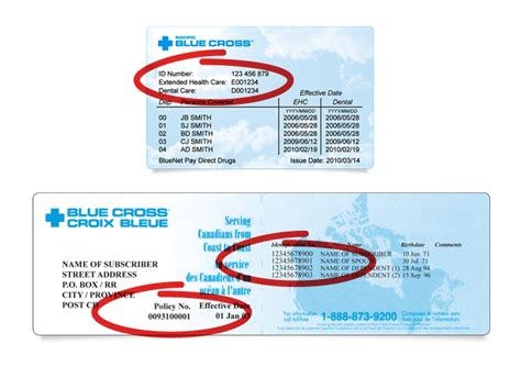 6 10.0 government programs excellus bluecross blueshield program id card designation id number child health plus group code c prefix zfb. Excellus Group Number On Card : Nys Medicaid Managed Care ...