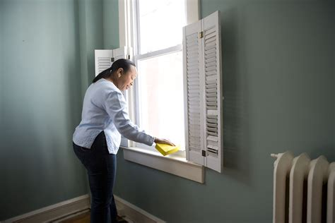 cleaning  stock photo  african american woman