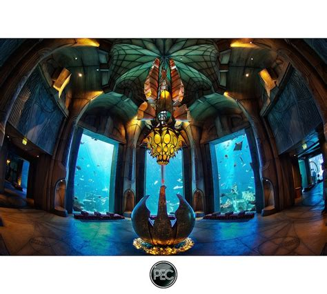 59 best images about atlantis the palm on resorts dubai and lost